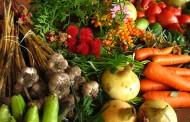 Agricultura biologică, în dezbatere